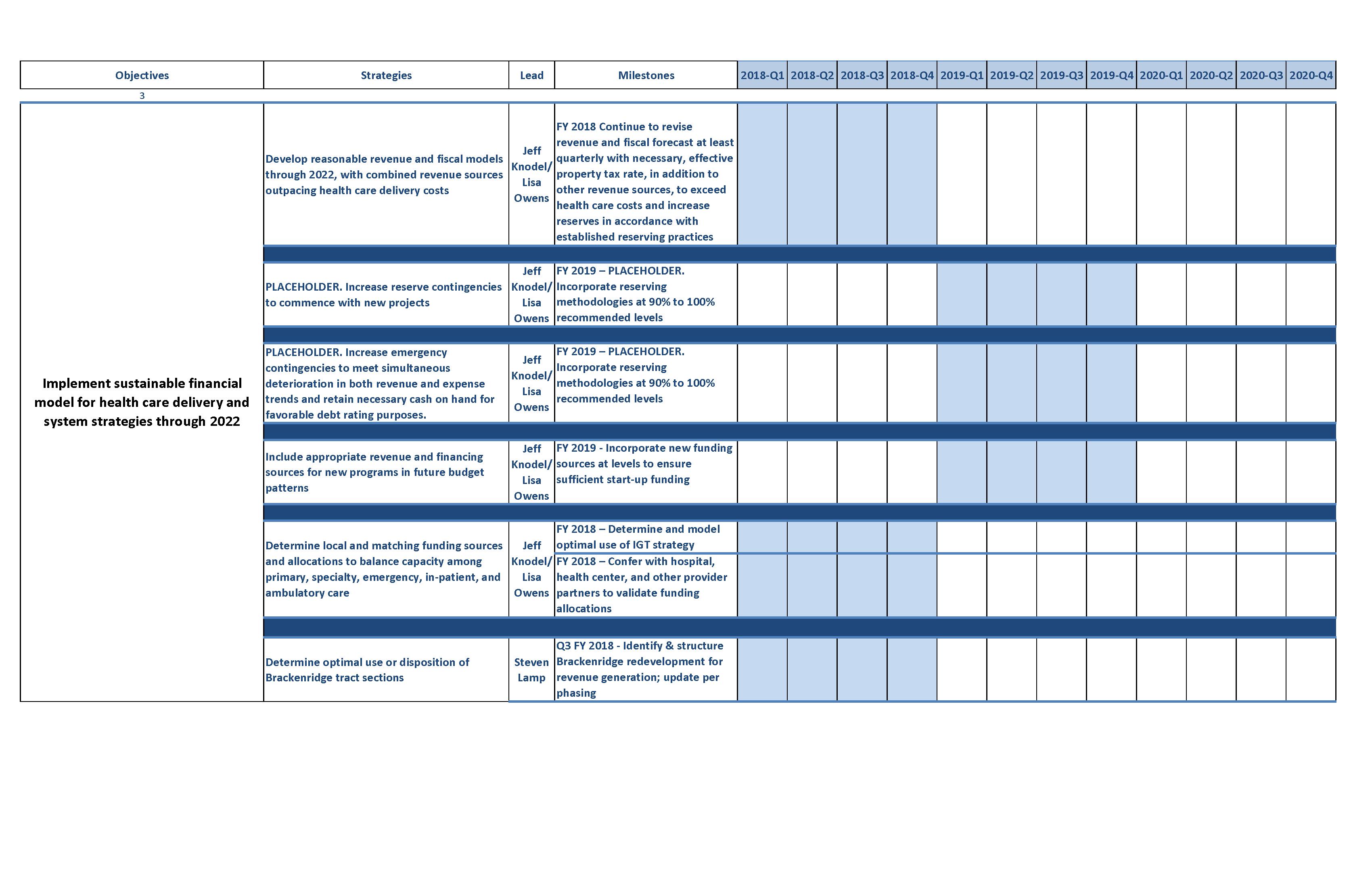 Executive Workplan Central Health